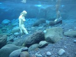 bassin bleu2